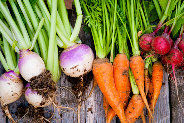 Root Vegetables are Making a Comeback