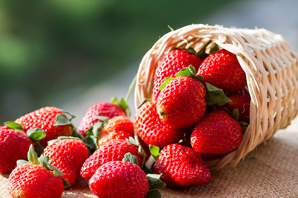 Strawberries: The Widely Loved Spring and Summer Offering