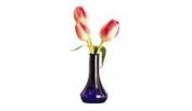 Bud and Flower Vases